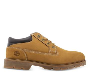 Men's Basic Oxford