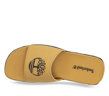 Men's Fells Slide Sandal